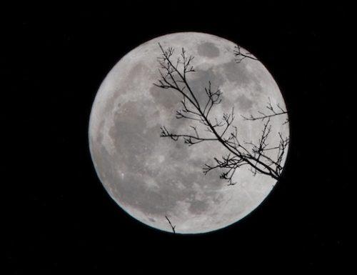 Eclissi lunare, la Super Luna Rossa dà spettacolo nei cieli di mezzo mondo
